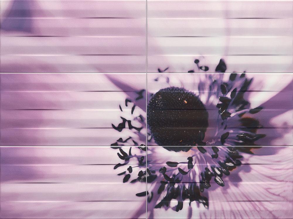 http://modabania.com/clients/220/images/catalog/products/2ccc2fedd62deb9f_Obraz-Maxima-violet-2-898x673_1.jpg