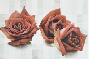 Тукан Декор Рози сет 2 части